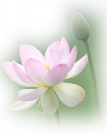 ชีวิตที่สมบูรณ์ต้องมีธรรมะเป็นหลักประคับประคองใจตลอดเวลา