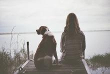 คนเลี้ยงหมาที่รักหมามากๆ  ตายไปก็เกิดเป็นหมาได้เหมือนกันนะ