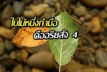 ใบไม้หนึ่งกำมือ คืออริยสัจ 4