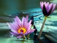 เกิดขึ้นจากความว่าง..ปล่อยวางจากความรู้สึก..