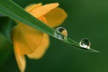 ศีล คือ ชีวิต...ชีวิต คือ ศีล
