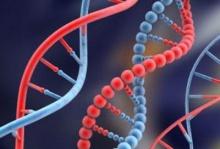 รหัสพันธุกรรมมนุษย์