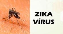 10 สิ่งควรรู้เกี่ยวกับไวรัสซิกา