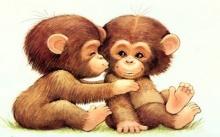 ลูกชิมแปนซีฉลาดไม่แพ้เด็ก
