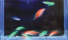 ปลาอาจช่วยผู้อัมพาต