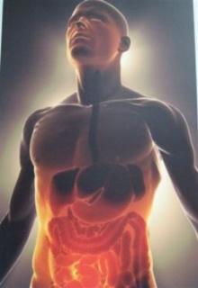 สำรวจความรู้ทั่วไปร่างกายคนเราส่วนใหญ่ไม่รู้หัวใจตรงไหน