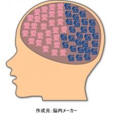 เจาะกะโหลกเจอเหตุขับรถไม่สุภาพ เพราะมีมัน สมองของมนุษย์สมัยหิน