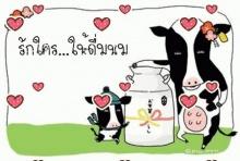 ดื่มนมตอนเช้า อิ่มยาวถึงมื้อกลางวัน