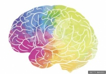 """นักวิทยาศาสตร์พบแบบแผนการทำงานของ """"สมองสร้างสรรค์"""""""