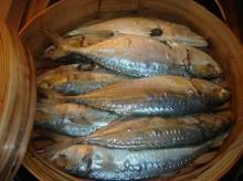 คุณค่าจากปลา ... ราชาของโปรตีน