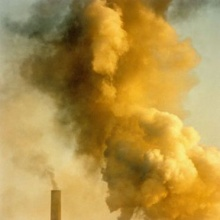 อากาศสกปรกทำให้มีสถิติผู้ป่วยสูงขึ้น ไอเสียทำไส้ติ่งอักเสบ