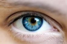 เดิมทีมนุษย์มีลูกตาสีน้ำตาลทั้งโลก ดีเอ็นเอกลายถึง ได้มีลูกตาสีน้ำเงิน