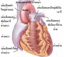 ก๊งเหล้าช่วยให้ห่างภัยโรคหัวใจ แต่ให้กินพอเป็น แค่กระสายยา