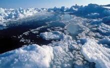 โลกร้อนส่งผล100ปีระดับน้ำทะเลพุ่ง1ม.