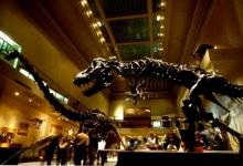 รู้มั้ย ไดโนเสาร์มีอุณหภูมิในร่างกายเท่าไร