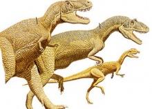 มนุษย์มีเชื้อไดโนเสาร์อยู่ในตัว จุดชนวนให้เกิดอารมณ์ซึมเศร้า