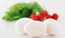 ก่อนกินไข่  ต้องอ่าน..!!