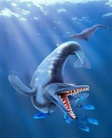 พบซากวาฬโบราณบริเวณขั้วโลกใต้