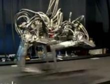 สุดยอดหุ่นยนต์ชีต้าห์ ที่วิ่งเร็วกว่า ยูเซน โบลต์