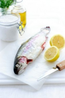 กินปลามันๆไว้ประจำเพื่อป้องกัน ความจำเสื่อมกับ เป็นอัมพาต
