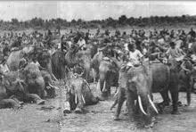 ตะพุ่นหญ้าช้าง การลงโทษอีกรุปแบบหนึ่งในสมัยโบราณ